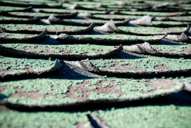 Cracked And Missing Shingles are the signs you need a new roof